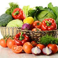 список разрешённых овощей на фазе круиз диеты дюкана